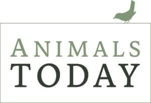 Animals Today