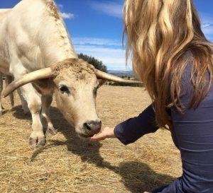 Karen Soeters met stier Toro de la Vega